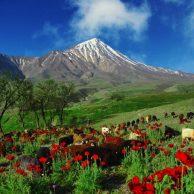 Mount Damavand Tour