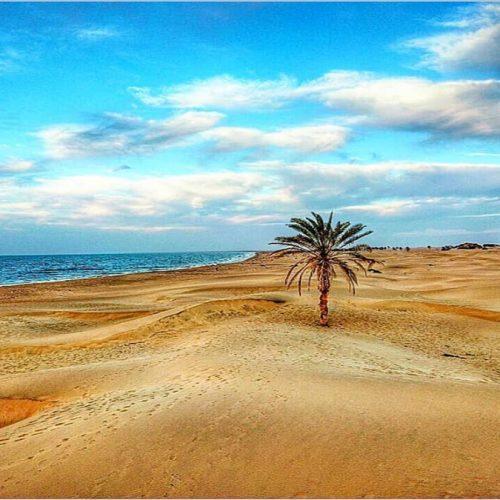 Iran-Chabahar-Darak-beach-Zhinotours